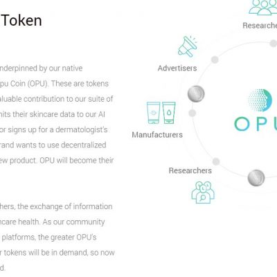 COINS-AND-TOKENS